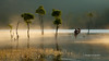A peaceful scene - Dalat (PVHuong Photography | 090 8915 090) Tags: phạmvănhương phamvanhuong nhiếpảnhphạmvănhương nhiepanhphamvanhuong 0908915090 pvhuongphotography pvhuongphotos cảnhđẹpđàlạt dalatlandscape tuyenlamlake hồtuyềnlâm sươngmù sươngmùgiănglối fog