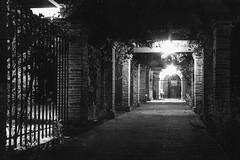 San Juan Capistrano, California: Mission Walk (rocinante11) Tags: california mission sanjuancapistrano film filmcamera blackwhite bw blackandwhite canona2e fence path gate night longexposure timesexposure ambient ambientlight