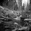 the precipice of eternity (Super G) Tags: 0710110scan california fujineopan400 holga120n d7685mins70d11 selfdeveloped film forest creek longexposure motion water trees frenchmeadows sierranevadamountains