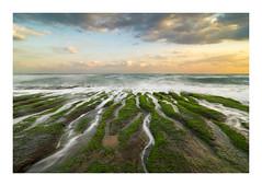 Laomei green reef (jos.pannekoek) Tags: laomei shimen district taipei northtaiwan taiwan landscape seascape d500 tokina1116mmf28 1116 sunrise zonsopkomst algae rocks reef