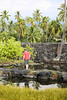 David Walks Around Fish Ponds (wyojones) Tags: puuhonuaohōnaunaunationalhistoricalpark pu'uhonua placeofrefuge hawaii bigisland makaloapools brackishwater ponds pools anchialineponds tides makaloa sedge mats undergroundsprings family david