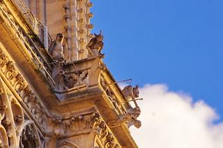 120 Paris en Février 2018 - Notre-Dame de Paris