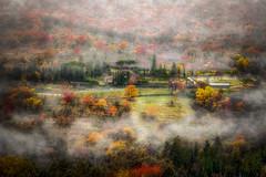 La Toscana (felramferdeo) Tags: niebla bosque landscape fog