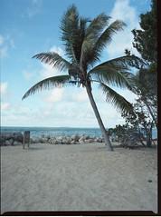 Key West, Fort Zachary Taylor beach (Todron) Tags: pentax 645 pentax645n 45x6 mediumformat medioformato 120 220 45mm 45mmf28 wide wideangle grandangolo filmcamera film epson v600 kodak portra portra400 kodakportra400 c41 negativefilm keywest florida isolekeys usa fortzacharytaylor beach spiaggia mare sea cielo sky bluesky nuvole clouds