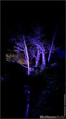 Enchanted Gardens 2017 - 179 (mchenryarts) Tags: arcen dunkelheit entertainment event events farbe fotojournalismus kasteeltuinen laternen licht lichtinszenierung lichtspektakel niederlande parkleuchten photojournalism schloessgaerten show garten laser lasershow