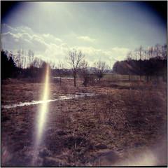 Lichtstrahl (Ulla M.) Tags: holga analog mittelformat 6x6 120 licht light lightleak flare snow vignette canoscan8800f toycamera freihand umphotoart analogue film filmphotography filmisnotdead ishootfilm