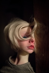 webDSC_2892 (ira.mish) Tags: dollzone raphael sd bjd doll olexandrrupera