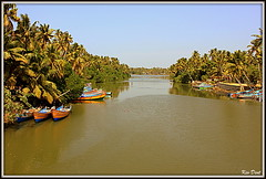 IMG_0717 (Uner Villa 5) Tags: india kerala backwaters alleppey cochin trivandrum varkala kovalam taj mahal kumarakom sub continent jungle quality surroundings world maharajah gypsy princess hindu hindi asia travel indie religion brahma shiva ganesh kings travelphotography national geographic gods own country