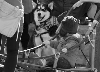 Husky Heroes '18, Morton Arboretum. 6 (EOS)