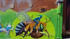 Hayden Dewar... (colourourcity) Tags: streetart streetartaustralia streetartnow graffiti graffitimelbourne melbourne burncity awesome nofilters colouurourcity hayden haydendewarart haydendewar shmek shmekone solarquin