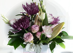 Bouquet (PhotosbyDi) Tags: flowers garden nikond600 tamronf2890mmmacrolens bouquet
