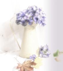 Hydrangea (mtwhitelock) Tags: flowersandjug hydrangea leaves stilllife textured
