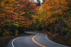 Autumn Country Road In The White Mountains (lestaylorphoto) Tags: america usa newengland newhampshire whitemountains autumn fall foliage colors travel nikon d610 leslietaylor lestaylorphoto ニューイングランド ニューハンプシャー州 ホワイト マウンテンズ ニコン road winding curve drive