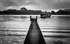 Which path will you take? (Martin Snicer Photography) Tags: ripple bw black white monochrome jetty australia phegansbay centralcoast 6d 50mm