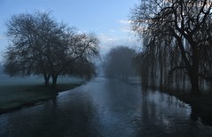 Smoke on the water. (pstone646) Tags: river mist nature reflections trees kent stour weather sunrise sky