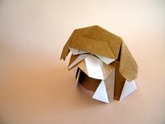 Beagle - Jacky Chan (Rui.Roda) Tags: origami papiroflexia papierfalten perro cão cachorro chien dog beagle jacky chan