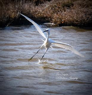 Crosswind landing!