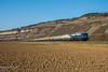 110 278 + 110 383 (bahnfotosmaintal) Tags: 110 115 centralbahn cbb krokusexpress maintal eisenbahnfotographie thüngerheim sonderzug