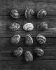 (Eirik Holmøyvik) Tags: snails snail twelve stilleben 4x5 foma chamonix fujinon largeformat analog analogue bw
