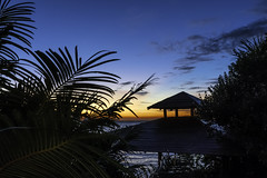 Gulf Sunset Beyond the Gazebo (Charles Patrick Ewing) Tags: nature matural suns sunset sundown tree trees gazebo landscape landscapes water ocean sea gulf blue yelow orange reflection palms plam great beautiful new all everything colrs colorful colourful colours night nighttime lowlight kight capture wonderful gorgeous vegetation mexico outdoor scenic photo photos silhouette silhouettes green cloud clouds sun twilight