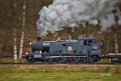 13th Jan 2018. 4277 on the Churnett Valley Railway. (Dangerous44) Tags: 4277 steam locomotive gwr great western 280 churnet valley staffordshire railway engine ballast train goods