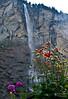 Staubbach Falls in Lauterbrunnen, Switzerland (Kirk Stauffer) Tags: kirk stauffer photographer nikon d4 valley lauterbrunnen switzerland staubbach waterfalls water falls europe sep sept september 2014 green red purple yellow flowers plants nature outdoors