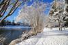 Kissed By Snow (dorameulman) Tags: winter landscape landscapephotography trees lake gastonia northcarolina heatherlock dorameulman haiku canon7dmark11 canon
