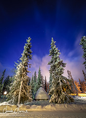 Luosto, Finnish Lapland (Claude-Olivier Marti) Tags: finlande finnishlapland cerclepolaire northeurope paysdunord nord luosto lapland laponie laponiefinlandaise hiver winter snowlandscape neige d850 nikond850 night nuit