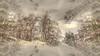 * Appennino Tosco-Romagnolo / Passo Della Colla * (argia world 1) Tags: appenninotoscoromagnolo montagne mountains passodellacolla faenza firenze neve snow alberi trees foresta forest paesaggio landscape cielo sky