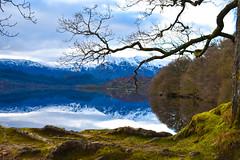 Loch Venachar (picsbyCaroline) Tags: landscape water grass mountain scotland unitedkingdom scenery tree colour