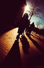 Thankyou! for standing beside me friend JoramKrol (mrofcolorsphotography) Tags: colorful colour colourful colours cold mrofcolors canon canonnederland canonphotography canon80d mrofcolorsphotography journeyofcolors journey photographer photography photooftheday photo photos city cityphotography day daylight daytime sunlight sun sunny sunshine sundown sigmaphotography shadow shadows long create havingfun fun holland thenetherlands netherlands streetphotography street