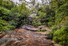 Cataract Falls, Lawson (Eddy Summers) Tags: waterfall water flow bluemountains pixelshift longexposure stackedimage stacked pentaxkp da15mmf4 nsw australia cataractfallslawson lawson cataract falls landscape bush