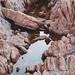 Rock Pool Reflection