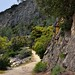 Walking a Nature Trail in the Hetch Hetchy Valley (Yosemite National Park)