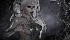 Silver Siren (Luηα Couηтeѕѕ) Tags: second life sl edit art blog fashion catwa maitreya amara beauty trap suicidal unborn aii egosumaii eve swallow cerberusxing mila cureless etoile the seasons story cynefin meowandstuff voluptasvirtualis exile