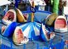 DSCN2929 (danimaniacs) Tags: santamonica beach pier amusementpark ride shark fake animal colorful