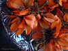 Corales. (Marilina Ramón) Tags: sony dscw210 flores coral