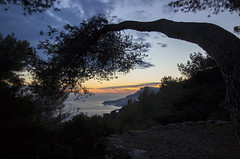 2018 winter on the Riviera [XII] (Olivier So) Tags: france frenchriviera riviera monaco montecarlo sunset sky clouds parcducros alpesmaritimes
