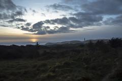 Rudbjerg knude (cecilieelgaardh) Tags: d3200 nikon nikond3200 nature natur danmark denmark jylland rudbjerg knude rudbjergknude fyr sunset solnedgang