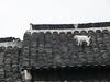 P1130726-2 (Simian Thought) Tags: xitang china watertown
