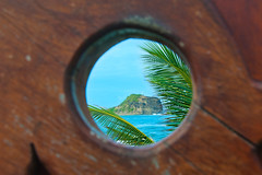 L'oeil de bois (Pop626262 (Fort occupé)) Tags: freedom martinique antilles mer caraïbes bois rocher feuille vert palmier bleu brun