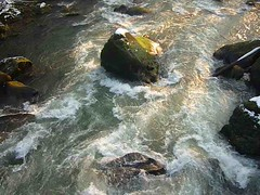 flow (Jörg Paul Kaspari) Tags: irrel irrelerwasserfälle dieprüm fliesgewässer bach river eifel südeifel naturpark stromschnellen fels felsen natur nature getöse fliesen flow