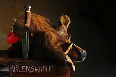 Valenswine (Studio d'Xavier) Tags: werehere antivalentine valentine valenswine swine pig boar stilllife strobist
