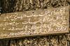 DSC_2140_1 (PakistanHighlands) Tags: snowfall nathiagali mushkpuri