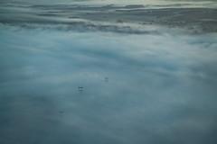 Emerging Ghosts (Jean Boris HAMON) Tags: a320 airbus approach clouds cockpit colors electricalwire fe1004004556gmoss fog france haze highvolatege highvoltageline inflight morning paris parisorly marcoussis îledefrance fr