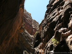 Sky above the Narrows (Annes Travels) Tags: zionnationalpark utah zionnarrows canyon desert