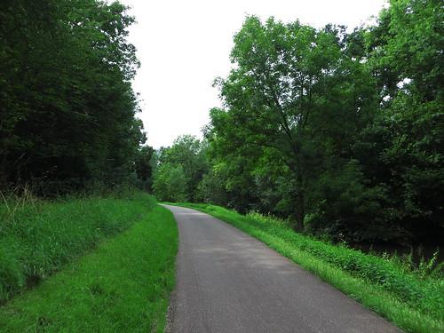 20140806 04 341 Jakobus Kanal Weg Wald Bäume