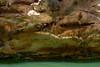 xingo -36 (mfcamacho) Tags: natureza represa barragem xingo sergipe