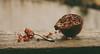 Pomegranate (Inka56) Tags: 7dwf flora pomegranate fruit woodtable spoon seeds bokeh pentaxm11450mm manualfocus dof pentaxart