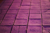 (mihxiii) Tags: path pink purple night 50mm f18